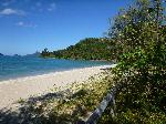 Henning Island Campsite