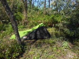 Overgrown campsite