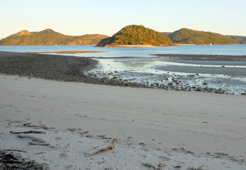 Late afternoon on Cockatoo Beach North Molle